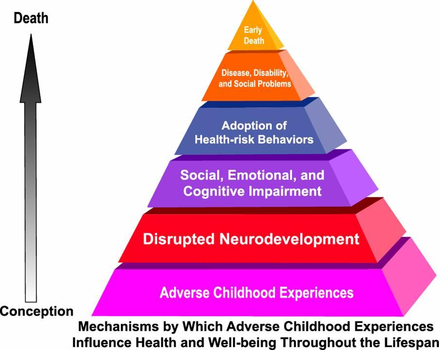 Adverse Childhood Experiences Linked To >> How The Adverse Childhood Experiences Study Could Make A