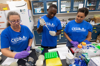 UWF Professor, Students Test For Flesh-Eating Bacteria In Local