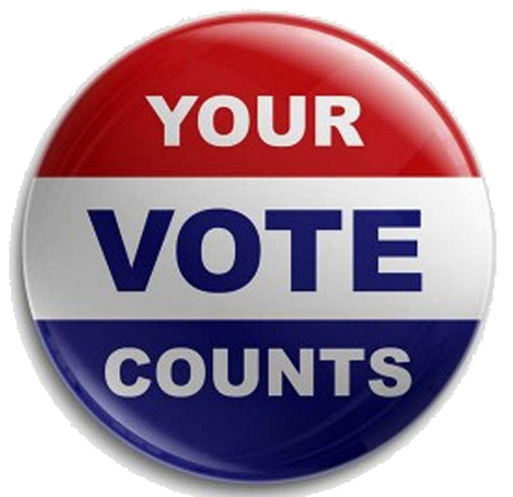 Image result for make your vote count