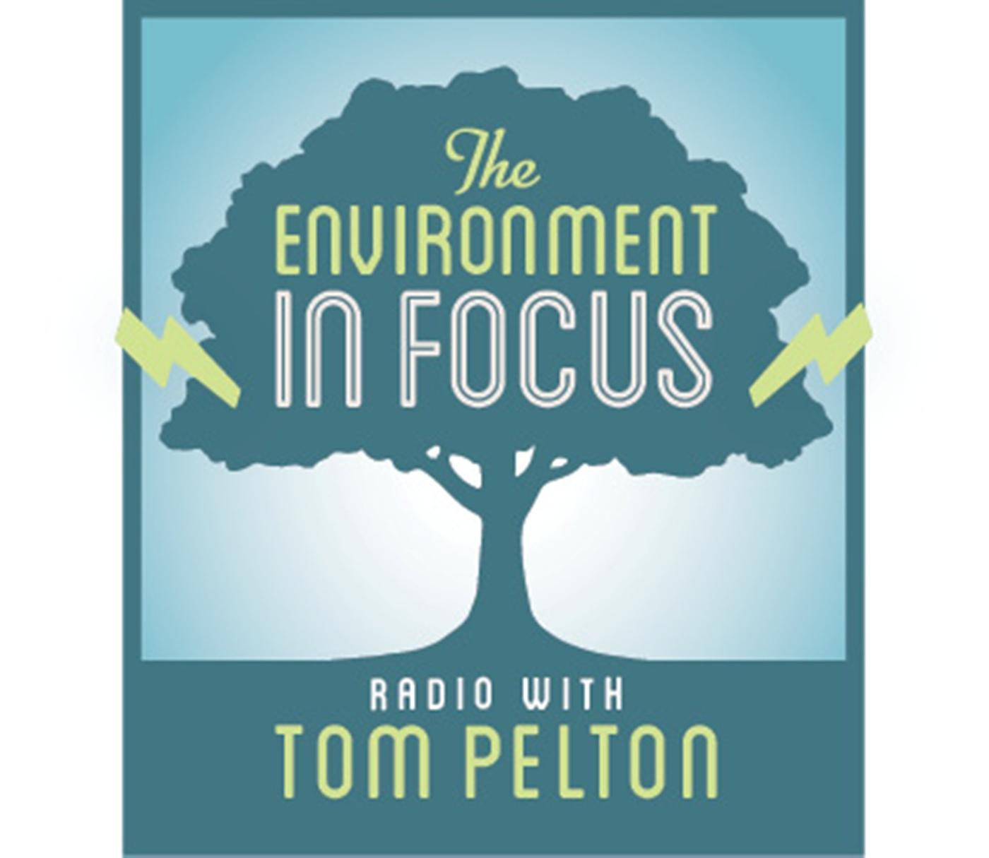 Lets Focus On Real Environmental >> The Environment In Focus Wypr